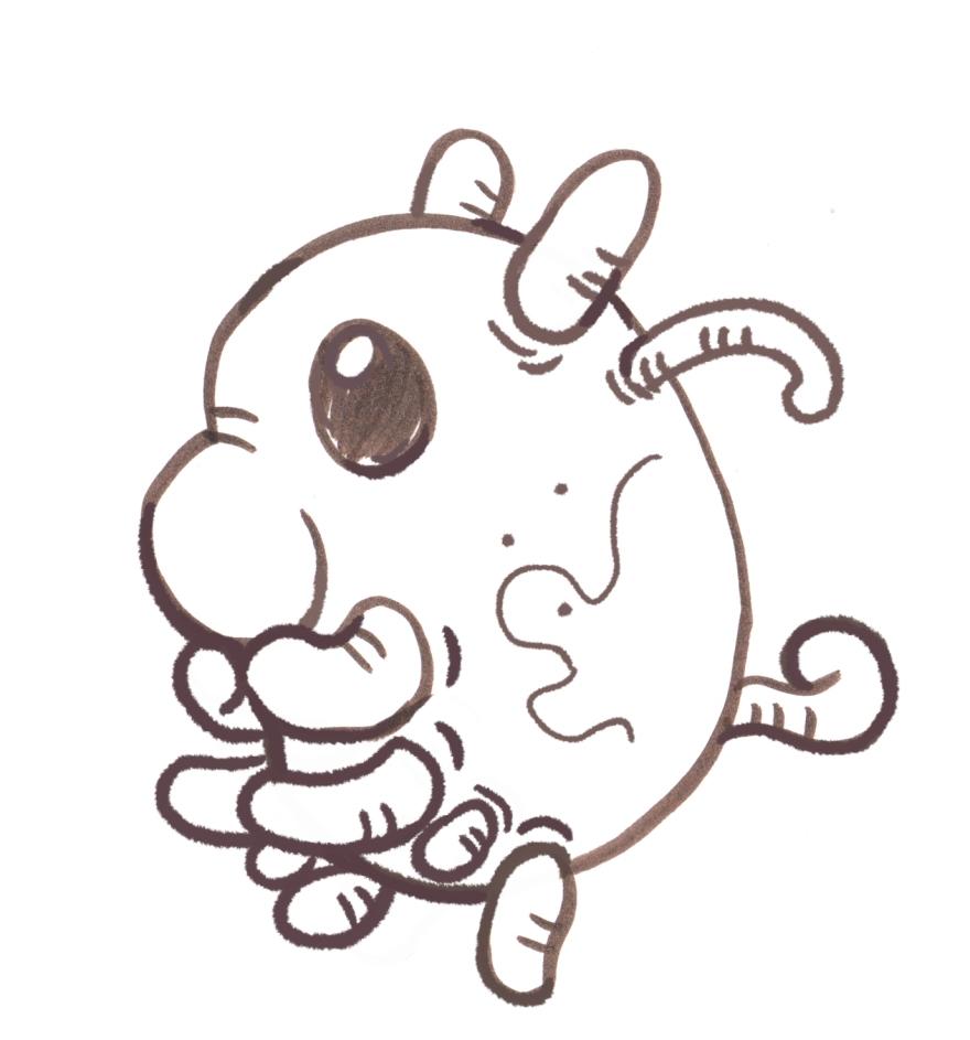 sea pig 2