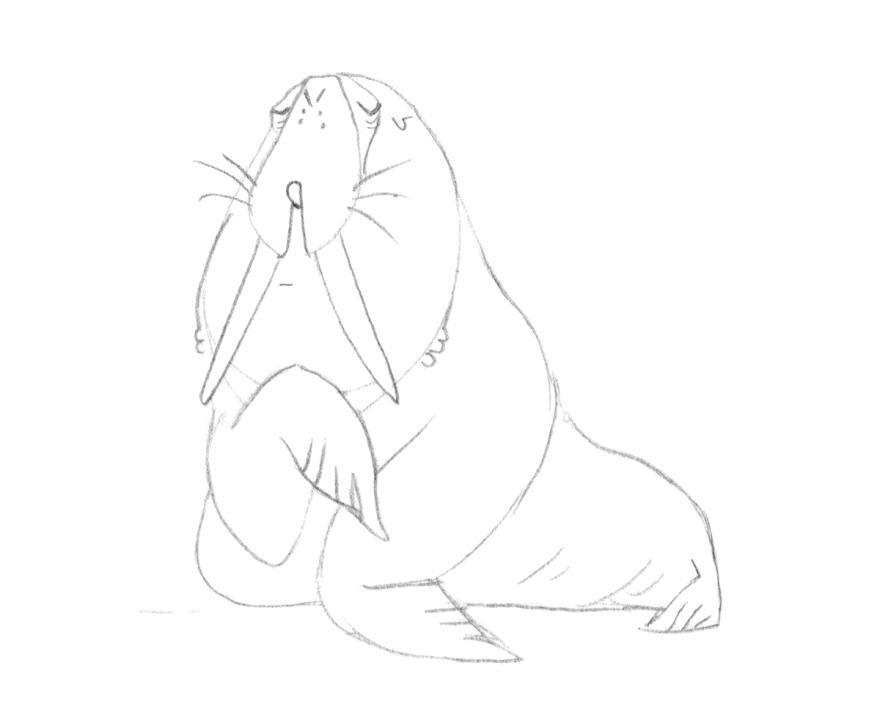 walrus sm